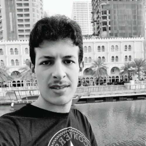 AhmedH1998