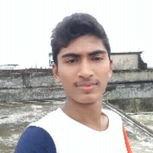 Hasib1