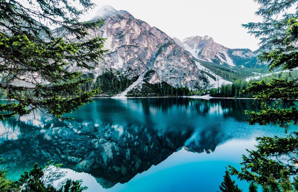 daylight-forest-glossy-lake-443446.jpg