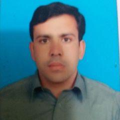 Tahir38786