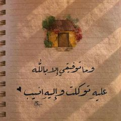 Alaaelshawady
