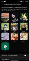 clipboard_image_1606671652035.jpg
