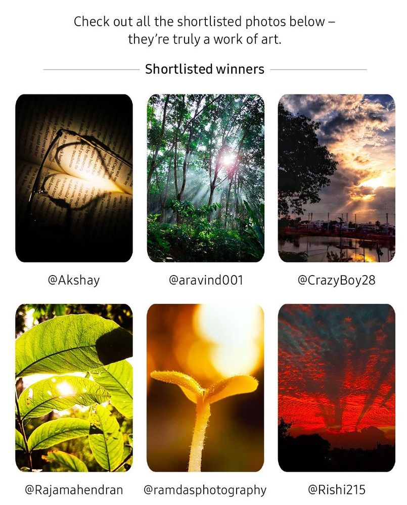 winner-admin-light_04_1.jpg