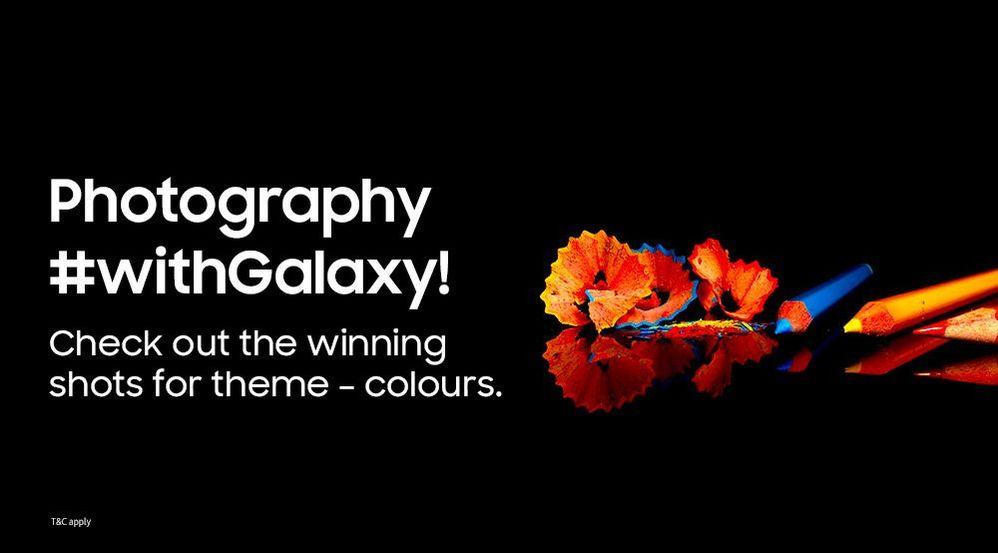 winner-admin-colors-final_01.jpg