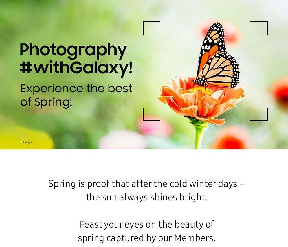 spring admin post_1.jpg