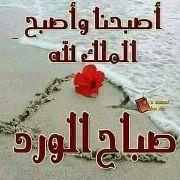 hanykhalaf