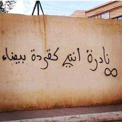 Ahmed767