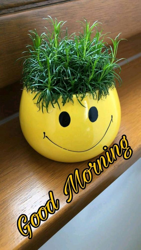 Good Morning Friends Have A Nice Day Samsung Members