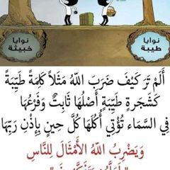 haydyEhab