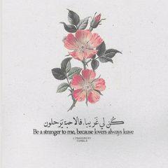 MahmoudAbuHamedah