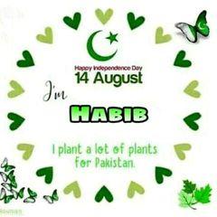 HabibSaaid