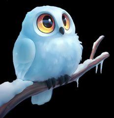 snowyowl8