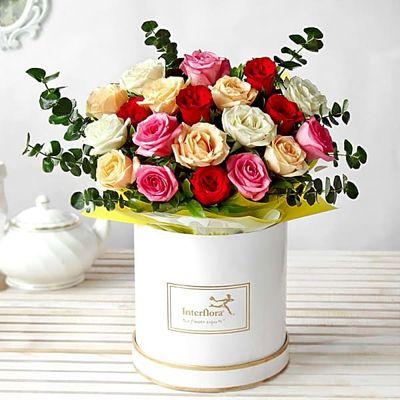 p-radiant-roses-98564-m-1.jpg